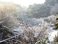 snow2014_2