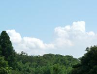 summer_sky2