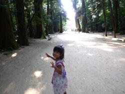 child_kashima