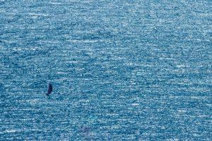海への感謝、親への感謝、 神との対話。